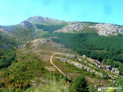 El Ocejón-Reserva Nacional Sonsaz;puig campana senderismo ancares mapa excursion sierra nevada bosq